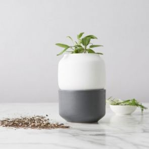 Chef'n Self-Watering Herb Planter Small